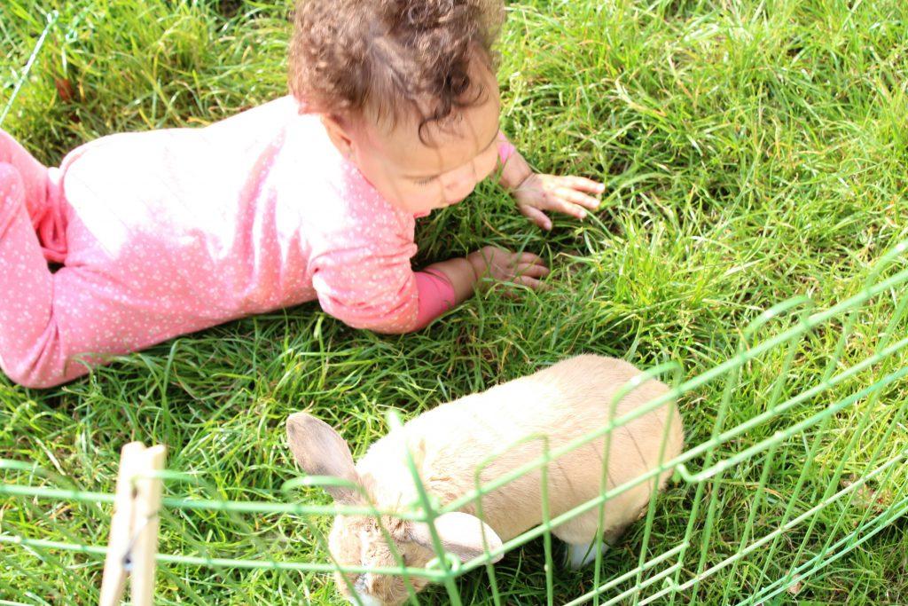 GoodGirlsCompany_konijn-kinderen en huisdieren