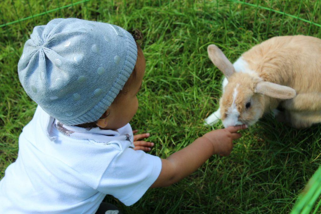 baby en huisdieren_GoodGirlsCompany_kind wil niet in box